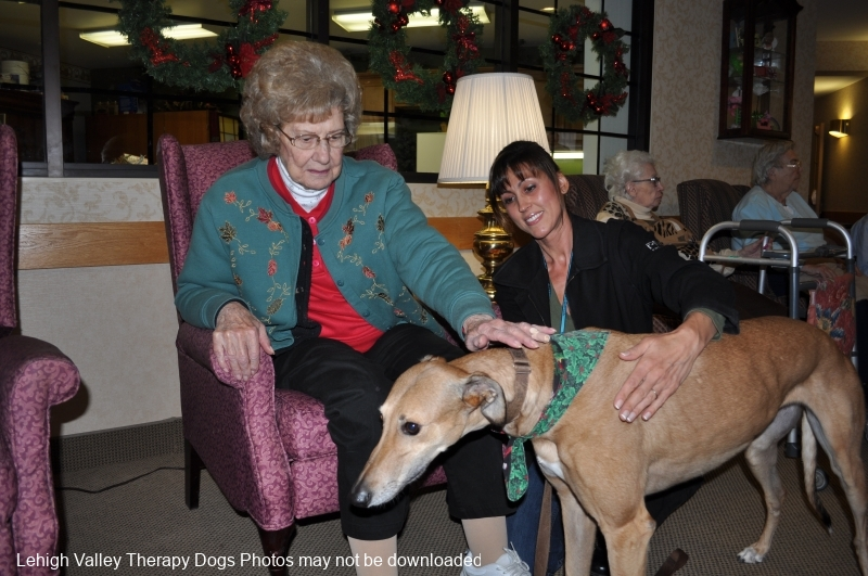 11_spnw_therapy-dogs-at-devonhouse-1