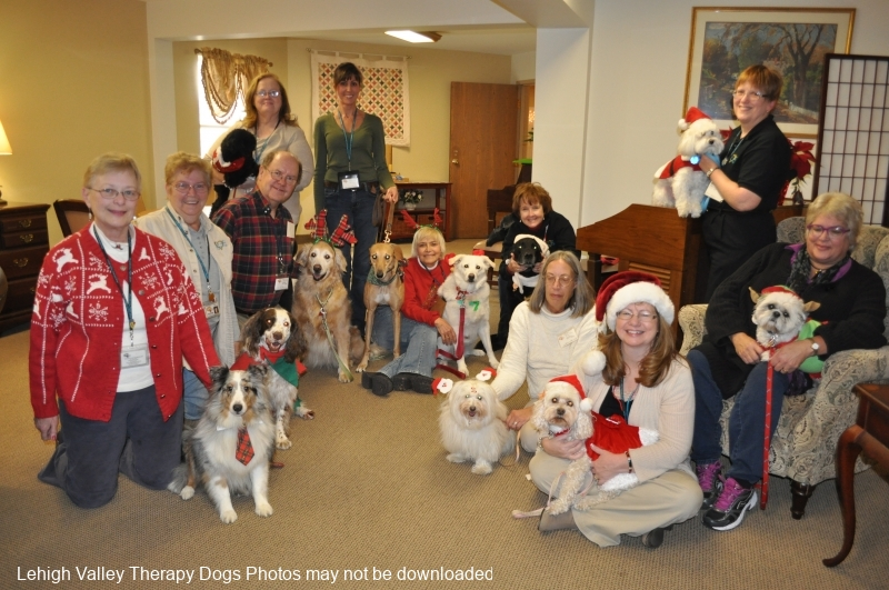 therapy-dogs-dec-16-2013