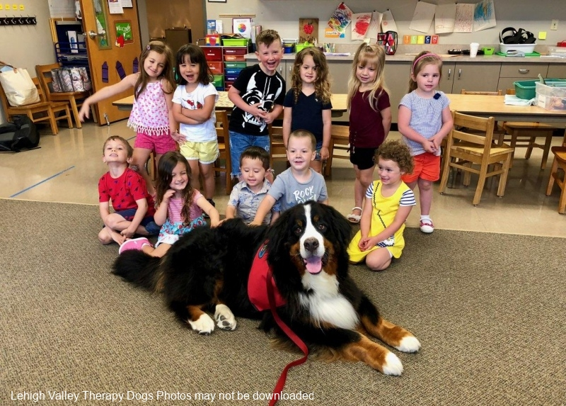 Duke and friends at Asbury Pre-school.6.2018