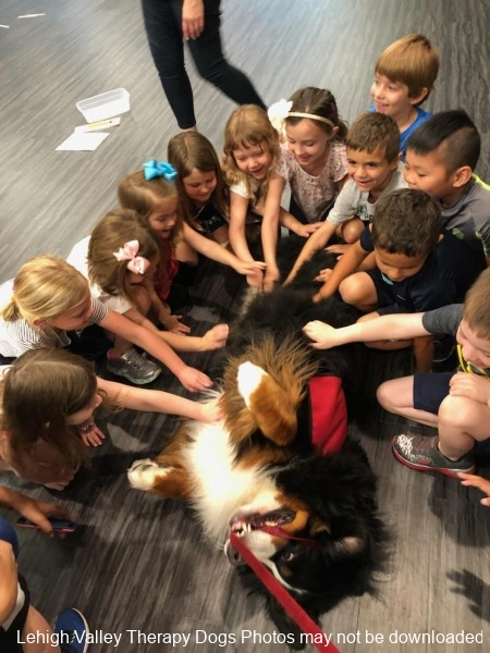 Duke enjoying belly rubs from his friends at Asbury Pre-School.6.2018