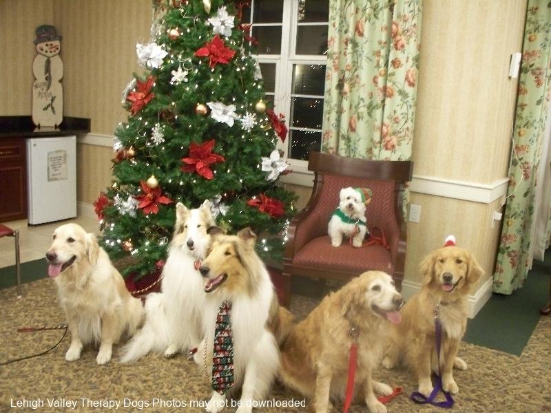 Atria Christmas 2012